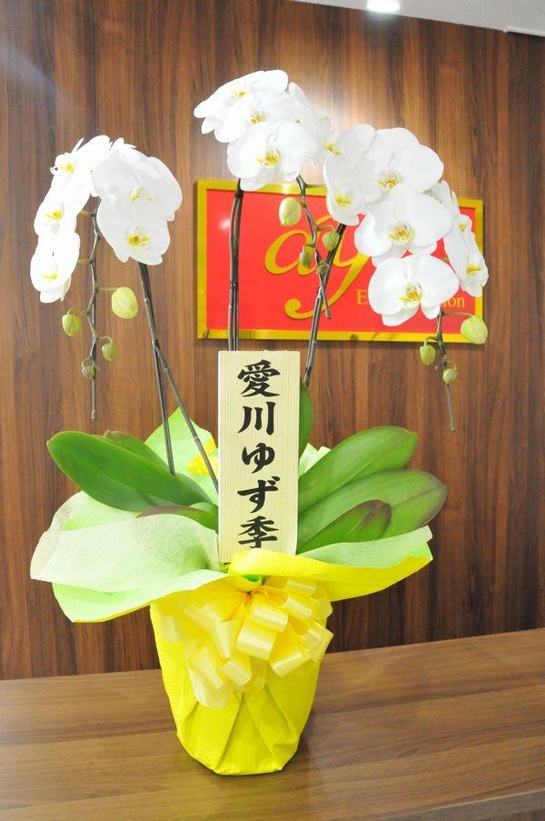 愛川ゆず季さんからのお祝い
